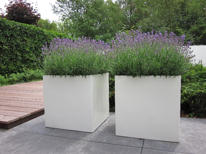 Polyester plantenbak 120x120x80cm